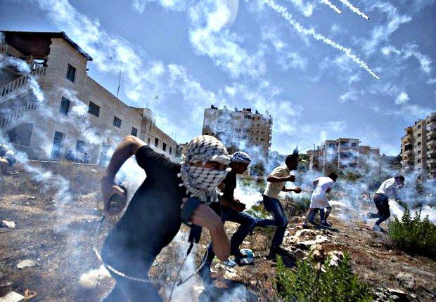 Cartas da Palestina – Tambémtu?