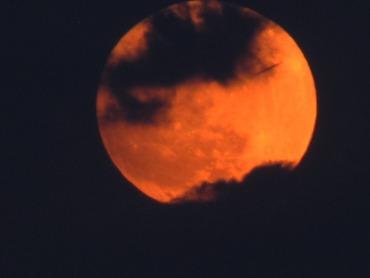 moon_full_moon_clouds_veil